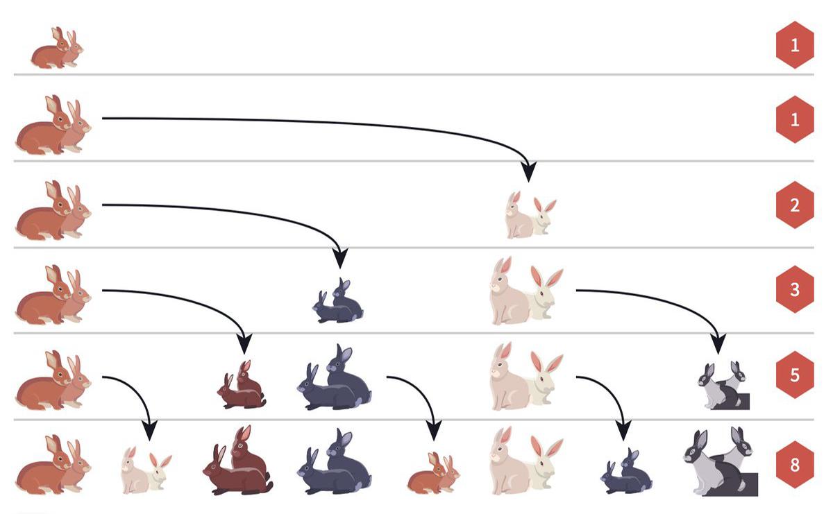 Fibonacci's rabbits'