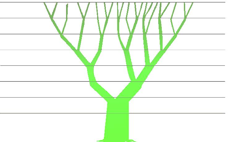 Fibonacci's tree